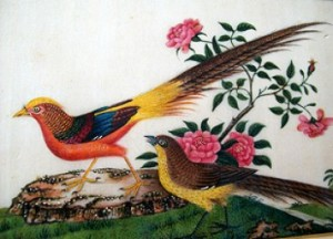 No 156 – Chinese Pit Paper Painting of Gold Pheasant Qing Dynasty (1644-1911)